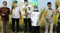 bupati jombang dorong pertanian organik